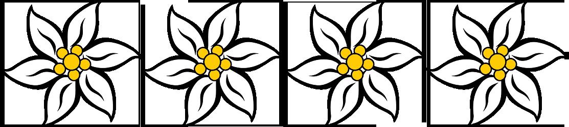 Edelweiss - Ferienwohnung Obermühle